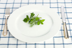 Diet concept. Parsley dill and  mint leaves on the plate with fork and knife on tablecloth Royalty Free Stock Image