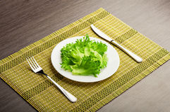 Diet concept. green lettuce on a plate Stock Image