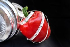 Diet concept measuring tape curl up on a Red Sweet Pepper with Silver Dumbbell. Diet concept,measuring tape curl up on a Red Sweet Pepper with Silver Dumbbell on Royalty Free Stock Photo