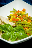 Diet food. Vegetable mix and chicken meat meal on white plate Stock Photography