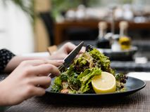 Diet food meal weight loss salad healthy fit. Diet food meal. Fresh herb salad for weight loss. Low calorie dish for healthy and fit body stock photos
