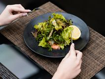 Diet food meal weight loss salad healthy fit. Diet food meal. Fresh herb salad for weight loss. Low calorie dish for healthy and fit body royalty free stock photography