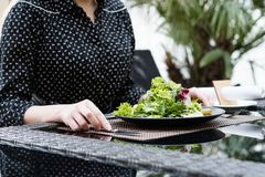 Diet food meal weight loss salad healthy fit. Diet food meal. Fresh herb salad for weight loss. Low calorie dish for healthy and fit body stock photo