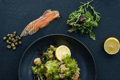 Diet food meal weight loss salad healthy fit. Diet food meal. Fresh herb salad for weight loss. Low calorie dish for healthy and fit body royalty free stock image