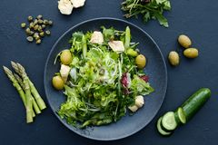 Diet food meal weight loss salad healthy fit. Diet food meal. Fresh herb salad for weight loss. Low calorie dish for healthy and fit body royalty free stock photos