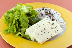 Diet food-white cheese Royalty Free Stock Photo
