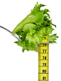 Diet Goals. Fresh Salad and Measurement Tape on a Fork. Representing Diet and Fitness Goals Stock Photography