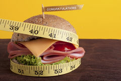 Diet Hamburger Royalty Free Stock Image