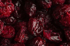 Diet healthy food. Dried cranberries cranberry fruit as background Stock Image