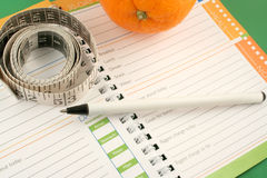 Diet journal. Writing in a diet and nutrition journal with orange to the side Stock Image