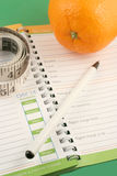 Diet journal. Writing in a diet and nutrition journal with orange to the side Stock Images