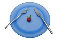 Diet lunch 5. A diet lunch of a single radish. With clipping path stock photos