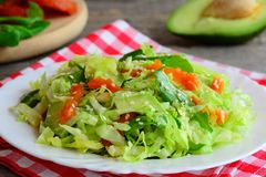 Simple vegetarian avocado coleslaw. Home coleslaw salad with fresh avocado slices, dried apricots, green arugula and sesame seeds. Diet meal plan to lose weight Royalty Free Stock Images
