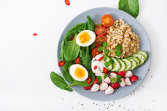 Diet menu. Healthy salad of fresh vegetables - tomatoes, cucumber, radish, egg, spinach and oatmea Stock Images