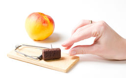 Diet mousetrap Royalty Free Stock Photos