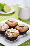 Diet muffins with bran Royalty Free Stock Images