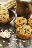Diet oat muffins with raisins royalty free stock images