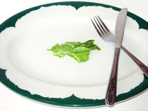 Diet Platter. Plate with lettuce, fork, knife royalty free stock photo