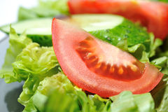 Diet Salad Royalty Free Stock Images