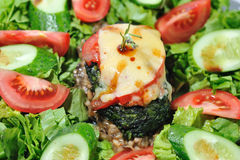 Diet Salad with beef Stock Photography