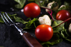 Diet salad, fresh tomato and mozzarella Stock Image