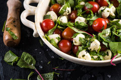 Diet salad, fresh tomato and mozzarella in rustic bowl Royalty Free Stock Images