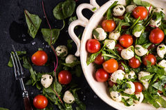 Diet salad, fresh tomato and mozzarella in rustic bowl Stock Photos