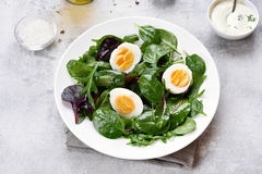 Diet salad with greens and eggs Royalty Free Stock Image