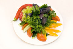 Diet salad on a plate Stock Photography