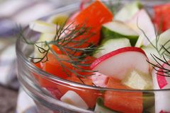 Diet salad with tomato, radish, cucumber and dill Royalty Free Stock Photos