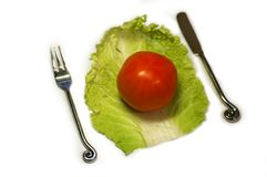 Diet - salat royalty free stock photo