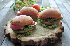 Diet sandwich Royalty Free Stock Photos