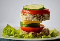Diet sandwich Royalty Free Stock Images