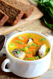 Diet, simple and tasty fish soup. Home fish soup with potatoes, carrots and green onions in a bowl Royalty Free Stock Image