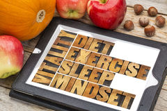 Diet, sleep, exercise and mindset - vitality. Concept - abstract in vintage letterpress wood type on a digital tablet with apples, pumpkin and hazelnuts royalty free stock photos
