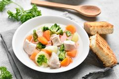 Vegetable chicken soup Royalty Free Stock Photos