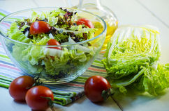 Diet vegetable salad Royalty Free Stock Photos