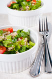 Diet vegetable salad Stock Image
