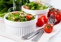 Diet vegetable salad Stock Photos