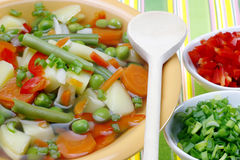 Diet vegetable soup. Stock Images