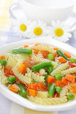 Diet vegetable soup Royalty Free Stock Images
