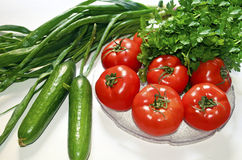 Diet vegetables tomato cucumber parsley and onions Royalty Free Stock Photos