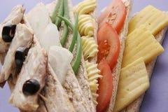Dieta. Fotografia Stock Libera da Diritti