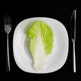 Dieta. Fotos de Stock Royalty Free