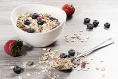 Dieta ciężaru straty śniadanie, zdrowy życia pojęcie z domowym robić muesli z świeżymi owoc Obraz Stock