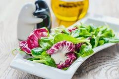 Dieta da salada para a correção do peso das folhas da salada de Lollo Rosso, da salada de agrião e de outras ervas verdes Conceit foto de stock royalty free