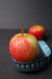 Dieta de Apple imagem de stock royalty free