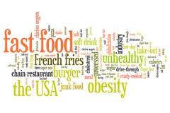 Dieta de los alimentos de preparación rápida Imagen de archivo libre de regalías