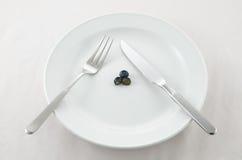 Dieta del mirtillo fotografia stock