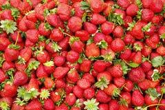 Dieta dell'ortaggio da frutto della disintossicazione di estate della primavera Chiuda su del mucchio del raccolto Supporto del s Immagine Stock Libera da Diritti